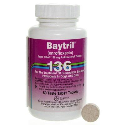 enrofloxacin for dogs baytril taste tabs for dogs and cats enrofloxacin antibiotic vetrxdirect pharmacy