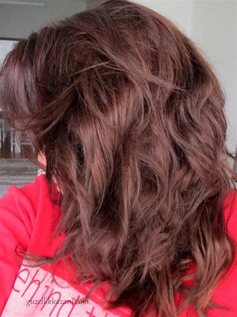chestnut brown hair color for middle age women chestnut brown hair color for middle age women garnier