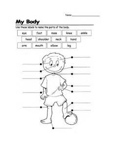 label the parts of the body worksheet for grade 1 face