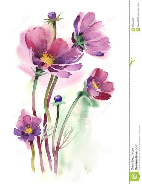 fiori dell acquerello fiori dell universo illustrazione di stock