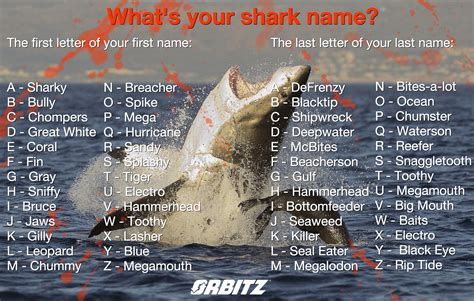 boat quiz names quiz what s your shark name huffpost life
