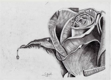dibujos a lapiz imagenes gratis dibujos de amor dibujo de amor a lapiz
