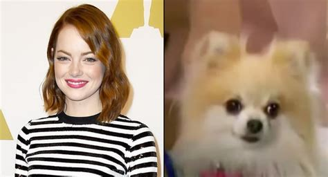 emma stone in zack and cody emma stone the suite life of zack and cody 2006
