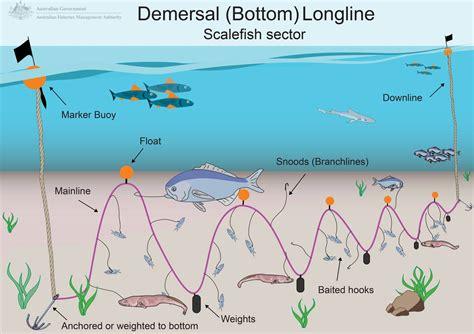 small boat longline system longlining australian fisheries management authority