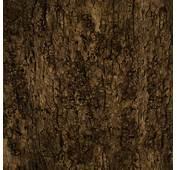 Tree Bark Wallpapers Group 77