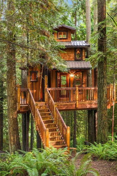 luxury tree house plans luxury tree house plans awesome best 25 tree houses ideas on pinterest new home
