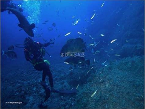 blue dive blue dive center diving