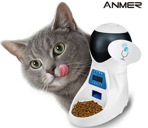 gadgets for pets anmer automatic pet feeder with voice reminder slash pets