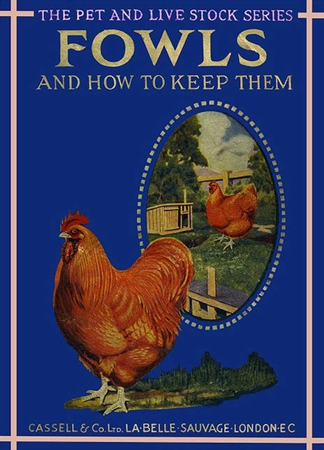 la belle sauvage the 0385604416 la belle sauvage fowls and chickens cover2cover cards