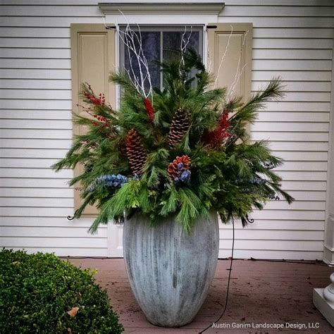 Planters With Birch Branches 1000 images about decor planters garlands wreaths more on fraser fir