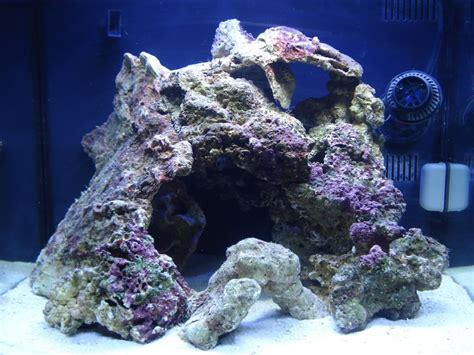Live Rock Aquascape Designs by Different Types Of Live Rock Aquascape Search