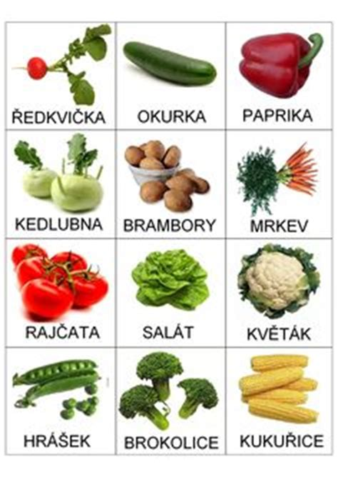 9 vegetables that start with b 1000 images about piktogramy pro děti on