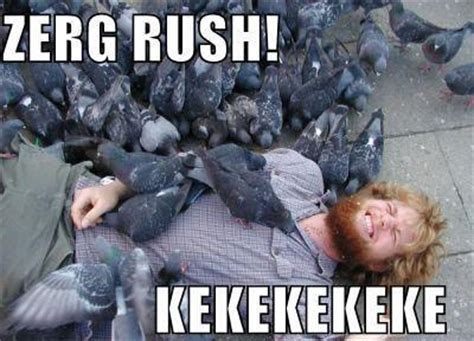 Rush Meme - image 21504 zerg rush know your meme