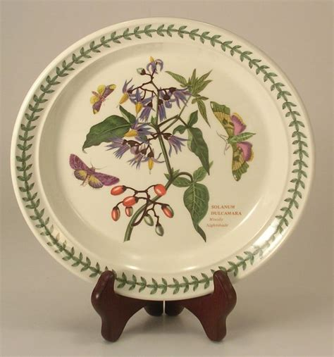 Portmeirion Botanic Garden Salad Plates Portmeirion Botanic Garden Woody Nightshade Salad Plate 8 5 Inch Gardens Salads And Woody