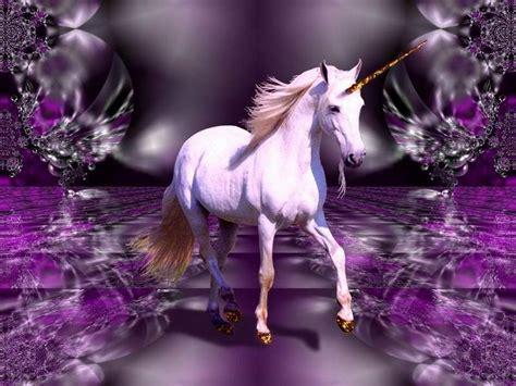 imagenes de unicornios morados unicorn desktop backgrounds wallpaper cave