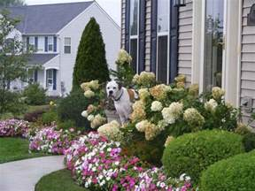 small front yard landscaping ideas gardening landscaping small front yard landscape ideas