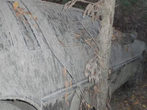what is a delorean worth today a delorean lost in the woods rots away