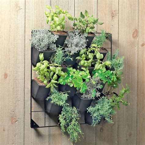 hanging potted plants on walls
