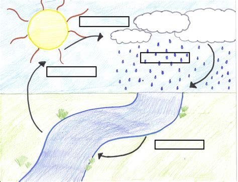 simple water diagram search results for water cycle diagram worksheet