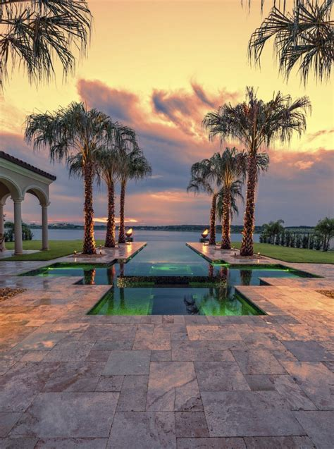 backyard palm trees 20 beautiful backyard palm tree designs