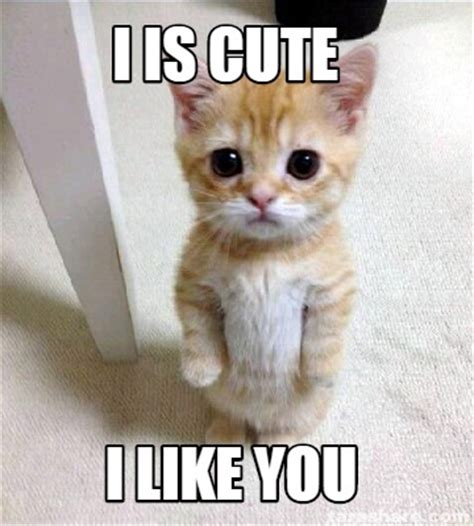 I Like You Meme - meme creator i is cute i like you meme generator at