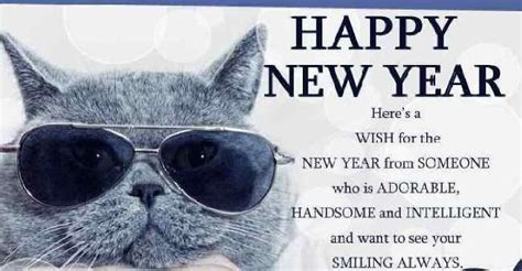 funny happy  year message  happy  year  message nieuwjaar grappig