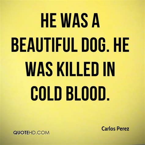 theme quotes in cold blood he was a beautiful dog he was killed in cold blood