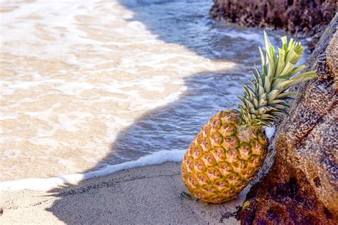 photo  pineapple wearing black aviator style sunglasses  party hat  stock photo