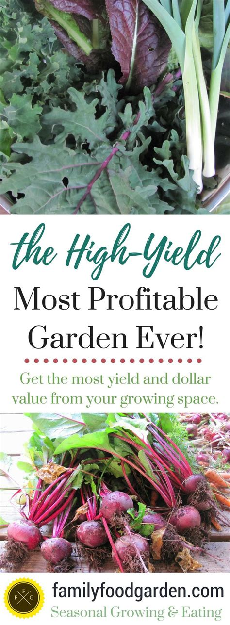 Bountiful Harvests With A High Yield Vegetable Garden High Yield Vegetable Garden