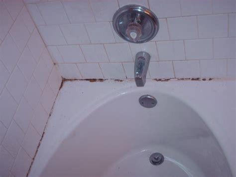 bathtub grime custom stone and tile care home