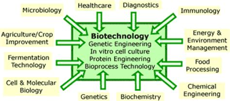 making nature work    introduction  biotechnology scq