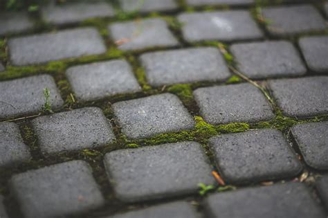 how to remove moss from concrete and brick patios see