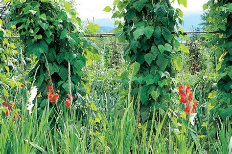 giardino biodinamico giardini