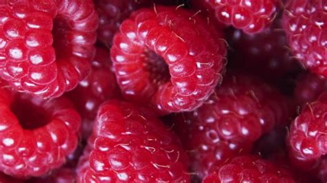 alimenti con pochi grassi cibi con tante fibre ma pochi grassi e calorie starbene