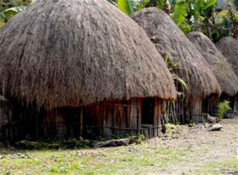 honai rumah adat papua titik air  payung hujan