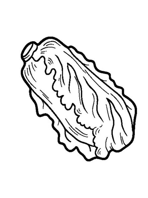 Lettuce Coloring Pages Download And Print Lettuce Lettuce Coloring Page