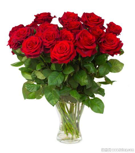 imagenes de rosas vivas 玫瑰鲜花图片大全大图 漂亮的玫瑰花图片大全 动态玫瑰花闪动图片 最好看的鲜花图片大全 微信头像花朵图片大全 真实鲜花