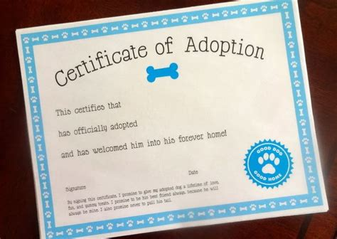 pet adoption certificate template 1000 images about puppy on care adoption