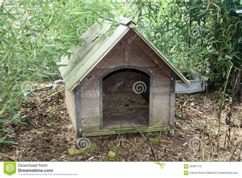 smalldog with wooden dog s house stock image image 30902231 wooden dog house stock photo image 56381710
