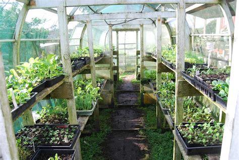 Large Garden Trellis Greenhouses Pod Easy Edible Gardening