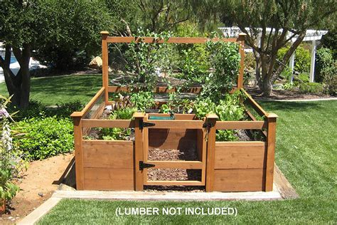 Vegetable Garden Kit How To Grow Tomatoes In A Raised Bed Foodie