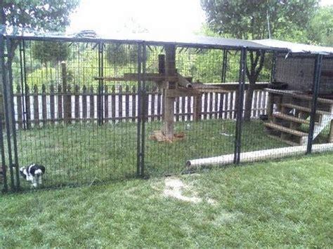 easy    cat enclosure  petsafe dog