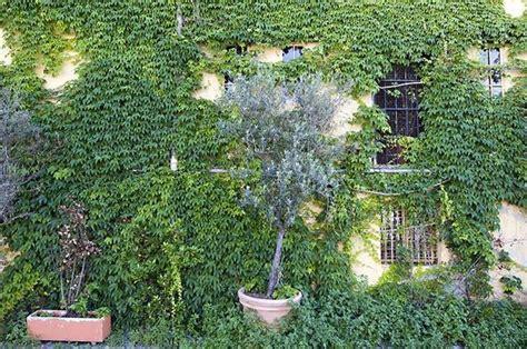 fare un giardino fai da te giardino fai da te fare giardinaggio come realizzare