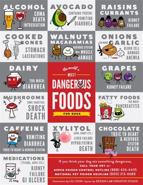 foods dogs shouldn't eat