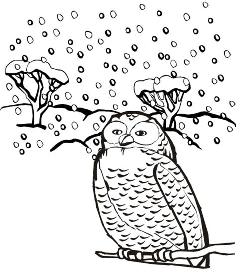 Winter Animal Coloring Pages winter animals coloring pages coloring home
