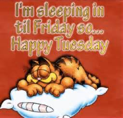 cartoon happy tuesday funny morning quotes quotesgram