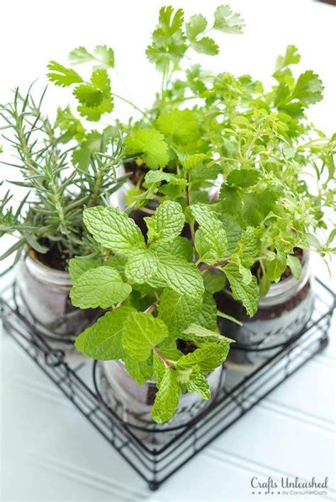 creative diy herb garden ideas 35 creative diy indoor herbs garden ideas ultimate