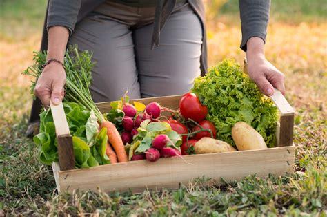 Food Pantry Garden Growing Love In Oswego Shawna Coronado » Home Design 2017