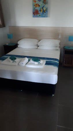 nautilus bed and breakfast prices b b reviews mission australia tripadvisor