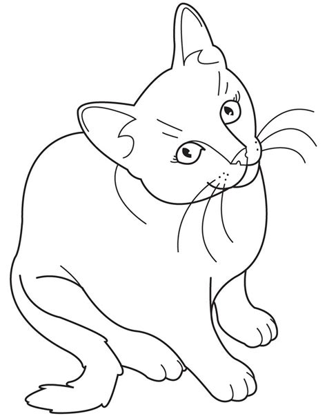 coloring pages cats printable cat coloring pages coloring me